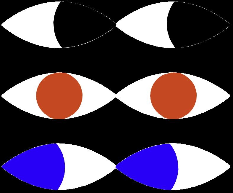 Gino Bud Hoiting illustratie van ogen